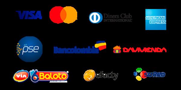 PayU Logos